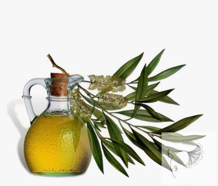 Ausztrál Teafa 100% tisztaságú, természetes illóolaj 100 ml