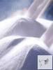 Nátrium perkarbonát 2,5 kg vödrös